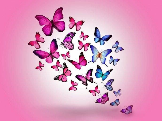 Бабочки. Фон для оформления личной страницы