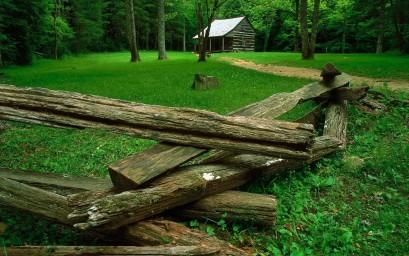 Лес, поляна, дом. Фон для оформления личной страницы